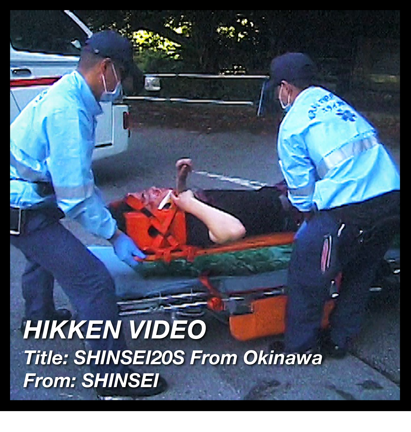 You are currently viewing [HIKKEN] SHINSEI20S From Okinawa